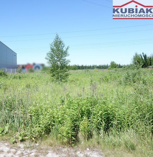 Działka budowlana na sprzedaż Sokołów  5406m2 Foto 4