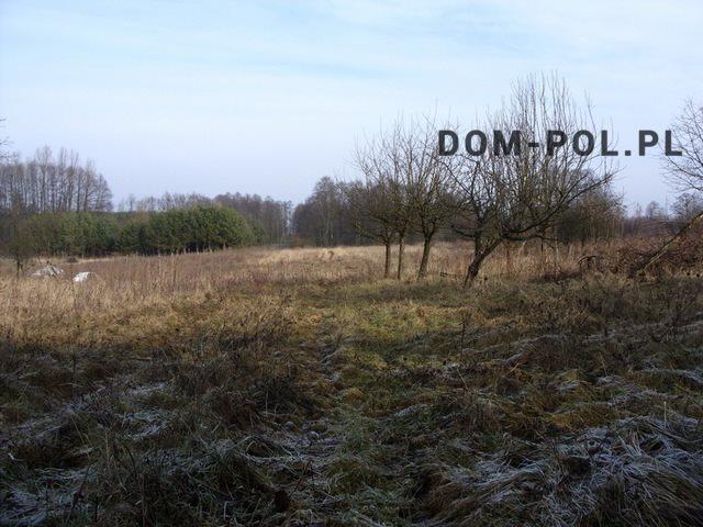 Działka inna na sprzedaż Stara Wieś-Kolonia  9892m2 Foto 2