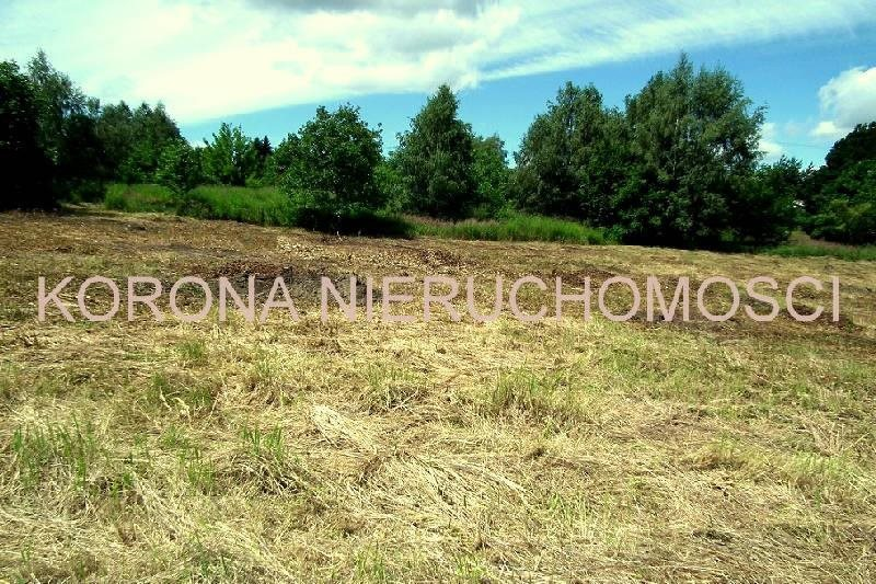 Działka budowlana na sprzedaż Rybnik  1994m2 Foto 2