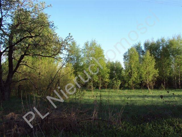 Działka rolna na sprzedaż Osuchów  27100m2 Foto 3