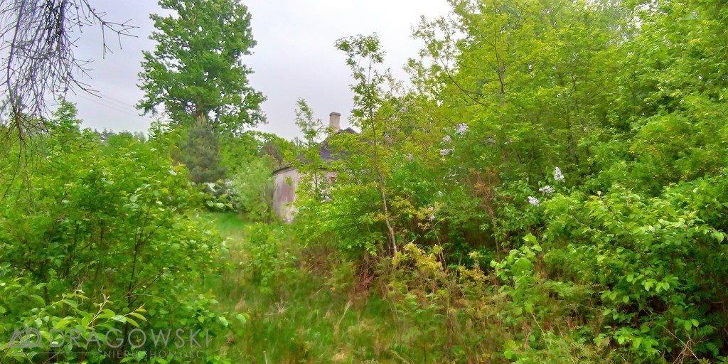 Działka budowlana na sprzedaż Henryków-Urocze  4645m2 Foto 1