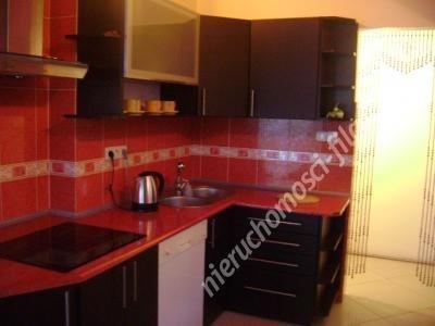 Mieszkanie trzypokojowe na wynajem Lisi Ogon  170m2 Foto 3