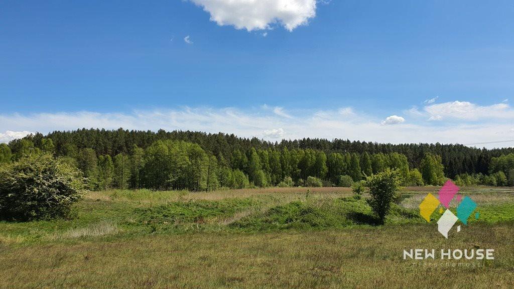 Działka rolna na sprzedaż Spręcowo  3000m2 Foto 6