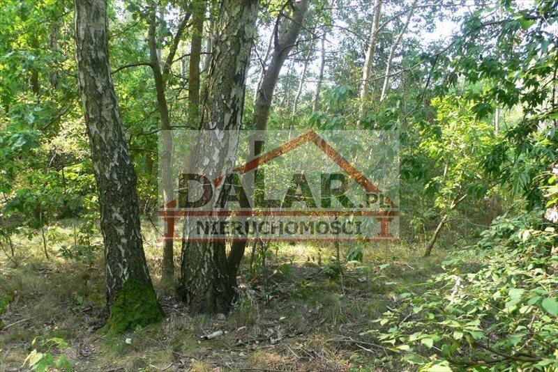 Działka leśna na sprzedaż Lesznowola, Jazgarzewszczyzna  26600m2 Foto 2
