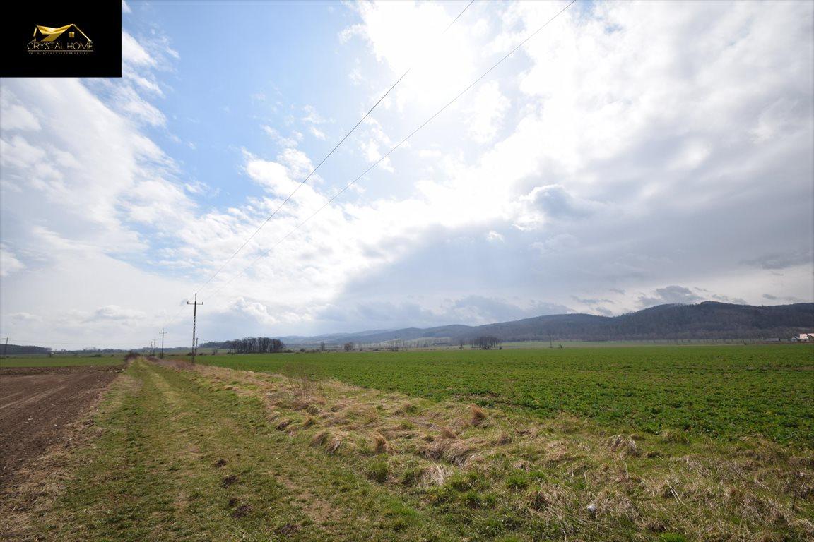 Działka rolna na sprzedaż Burkatów  23600m2 Foto 2