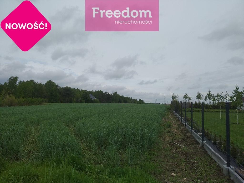 Działka rolna na sprzedaż Skotniki, Zgierska  20000m2 Foto 5