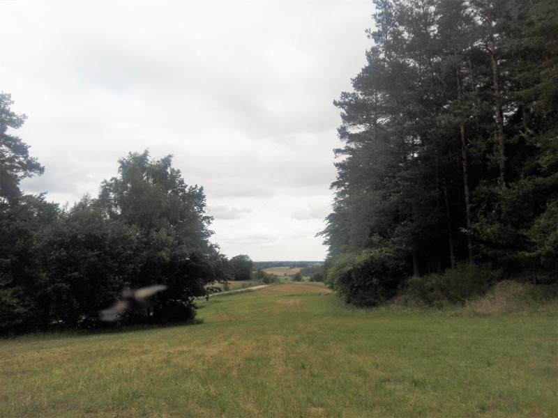 Działka inna na sprzedaż Kielno, Polna  50000m2 Foto 9
