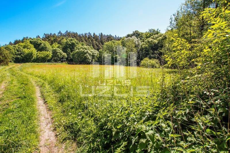Działka rolna na sprzedaż Czarnocin  1900m2 Foto 9