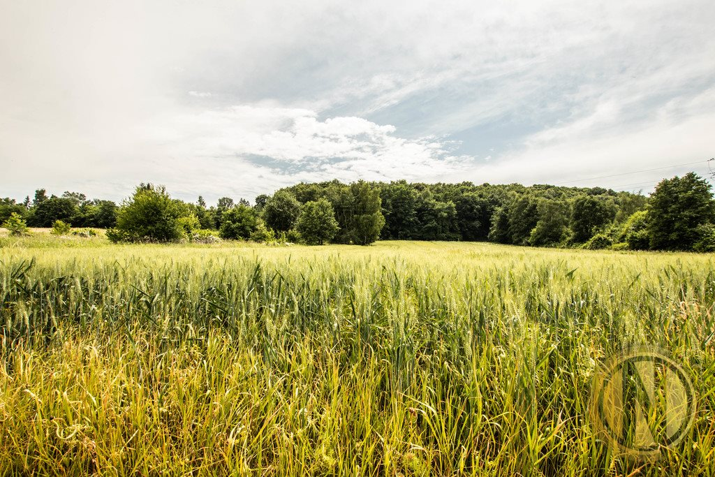 Działka rolna na sprzedaż Kraków, Wola Justowska, Wola Justowska  3396m2 Foto 1