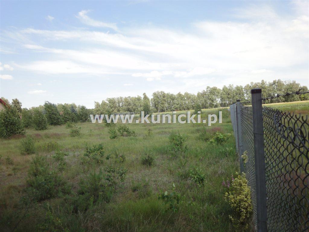Działka budowlana na sprzedaż Przyborowice Górne  6250m2 Foto 3