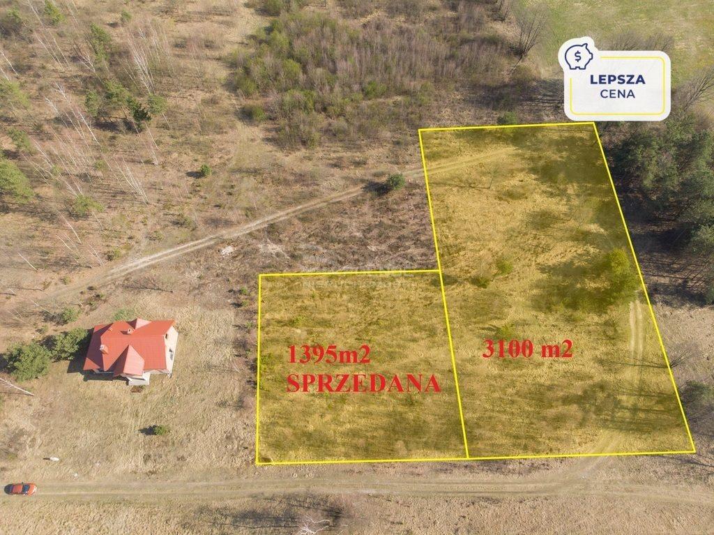 Działka rolna na sprzedaż Hołówki Duże  3100m2 Foto 2
