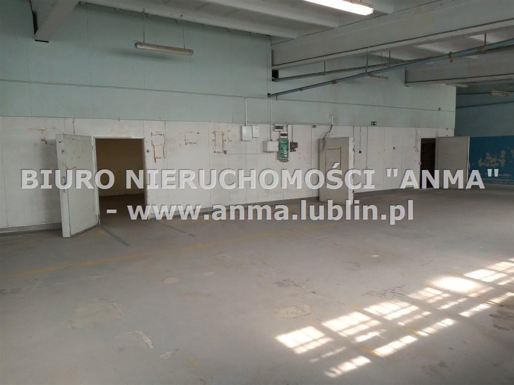 Lokal użytkowy na wynajem Lublin, Bronowice, Majdan Tatarski  355m2 Foto 4