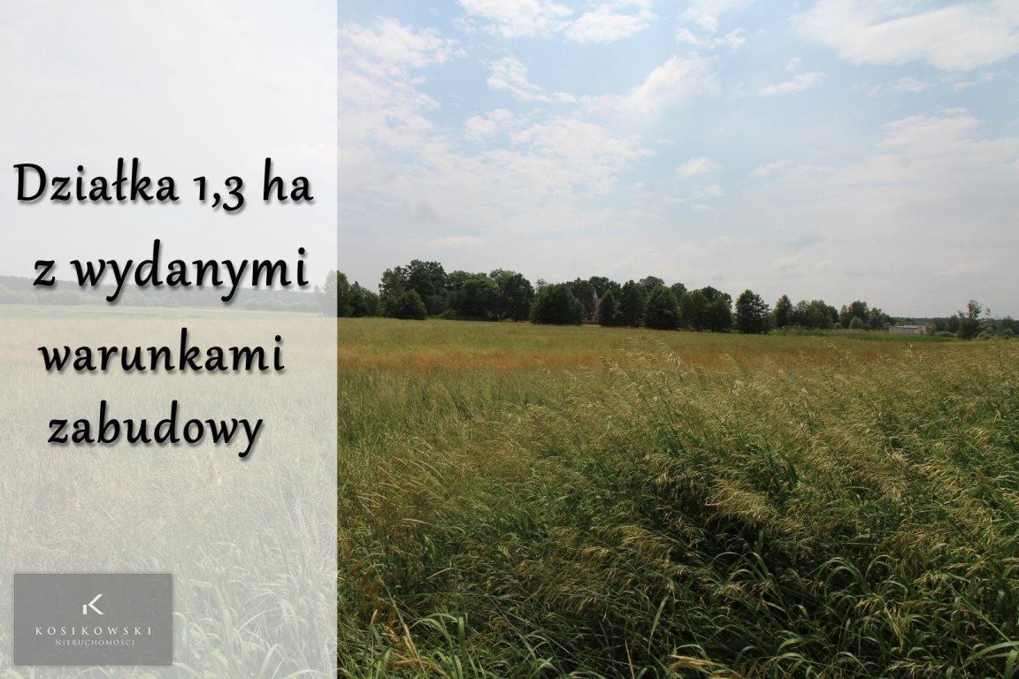 Działka inna na sprzedaż Pokój, Gmina Pokój  13000m2 Foto 1