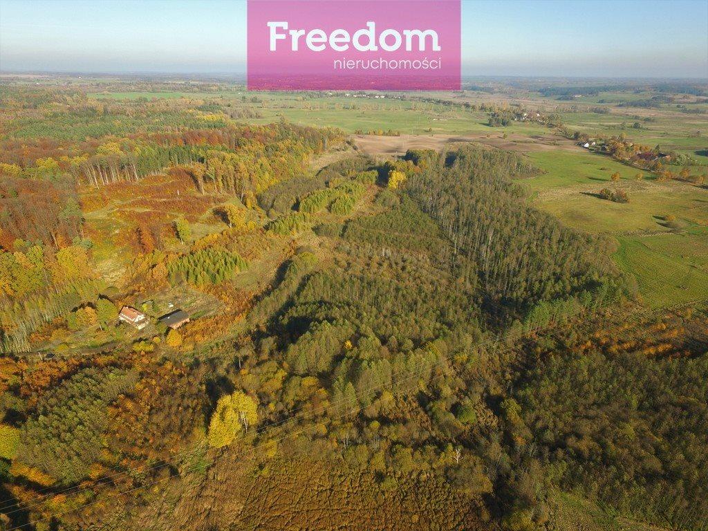 Działka leśna na sprzedaż Sobno  142300m2 Foto 3