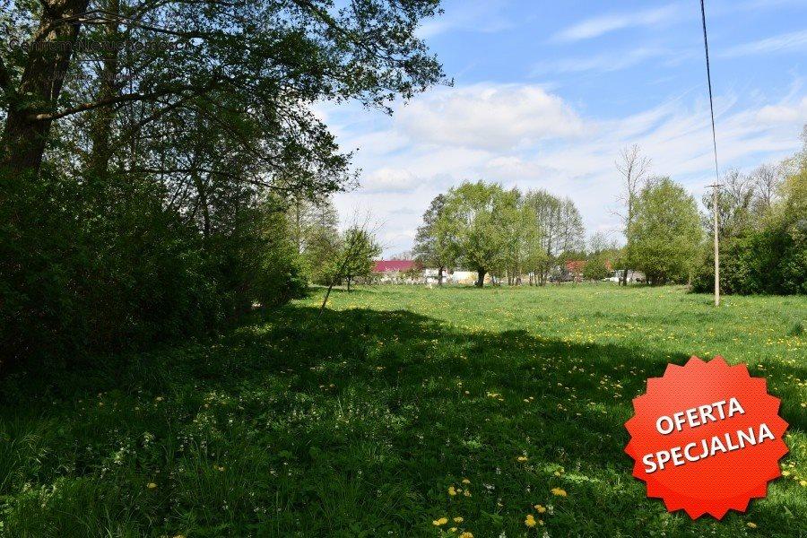 Działka siedliskowa na sprzedaż Małe Łunawy  7500m2 Foto 4