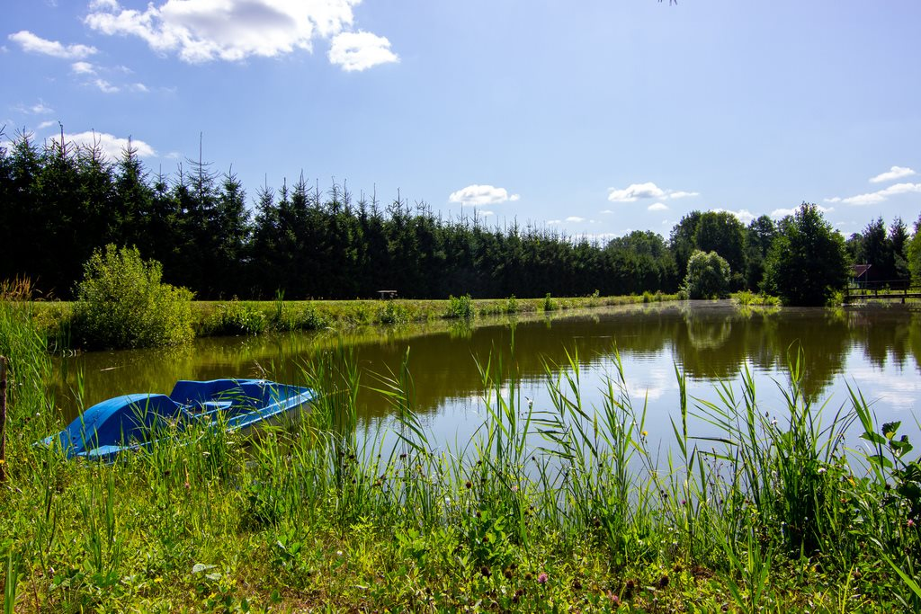 Dom na sprzedaż Tatarowce  490m2 Foto 6