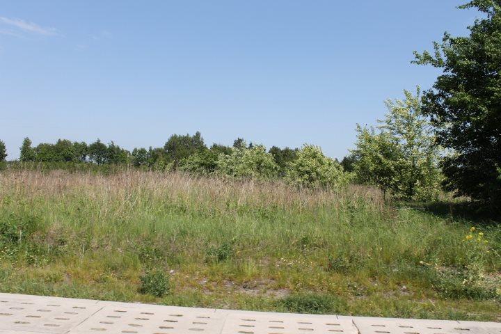 Działka rolna na sprzedaż Łódź, Widzew, Stare Moskule, Opolska  14997m2 Foto 8