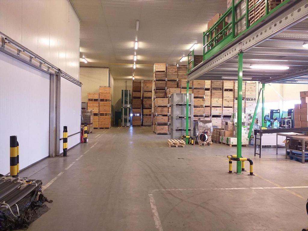 Lokal użytkowy na sprzedaż Wsola  1800m2 Foto 8