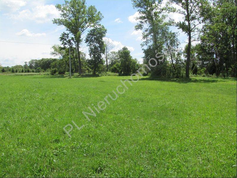 Działka rolna na sprzedaż Szymankowszczyzna  16600m2 Foto 2