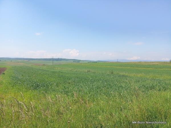 Działka rolna na sprzedaż Łubno Szlacheckie  4700m2 Foto 1