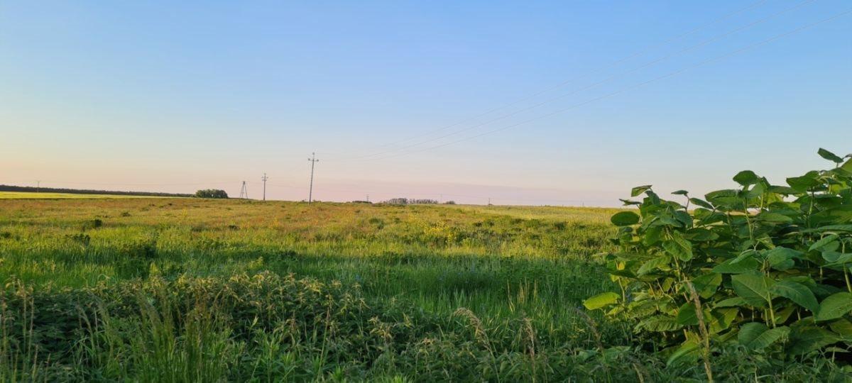 Działka rolna na sprzedaż Ratowice  24400m2 Foto 2