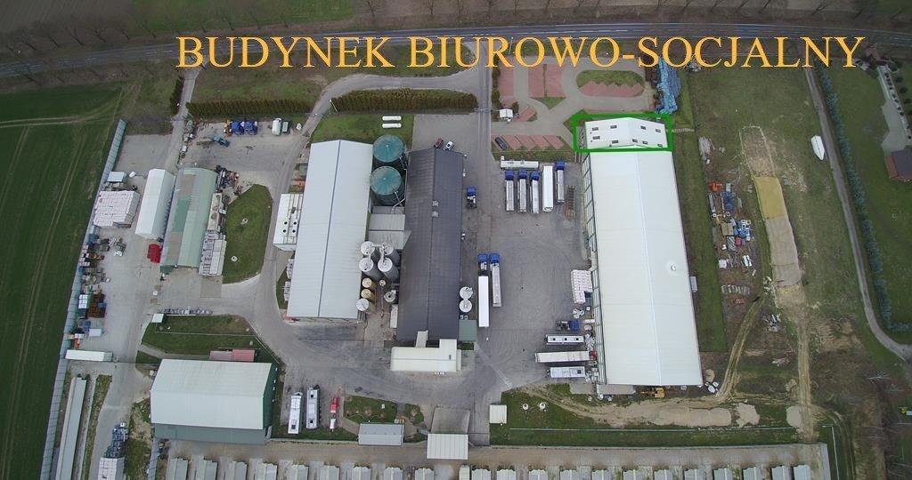 Magazyn na sprzedaż Gorzów Wielkopolski, okolice  112665m2 Foto 7