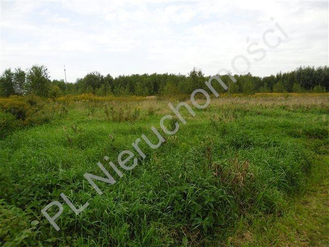 Działka rolna na sprzedaż Olesin  9983m2 Foto 2