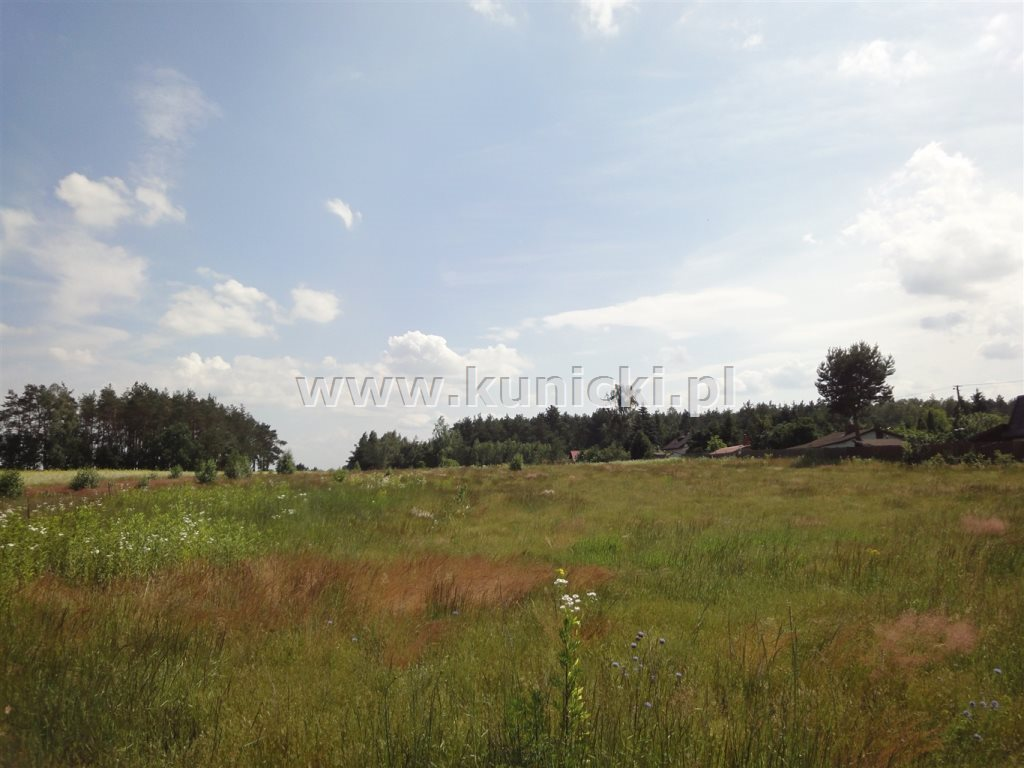 Działka budowlana na sprzedaż Przyborowice Górne  1250m2 Foto 1