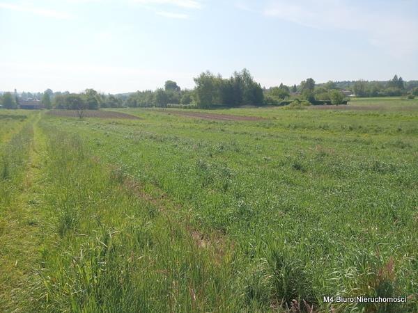 Działka rolna na sprzedaż Żeglce  15500m2 Foto 3