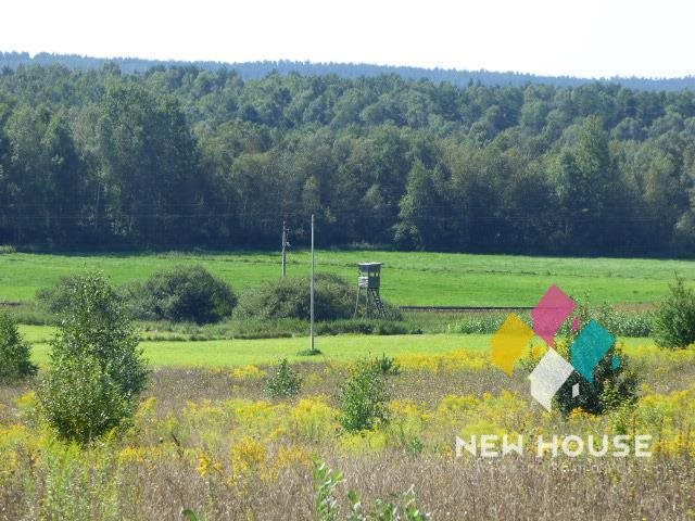 Działka rolna na sprzedaż Jonkowo  3445m2 Foto 2