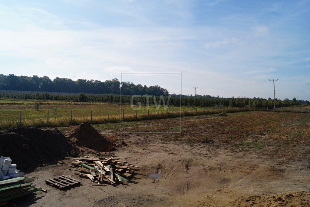 Działka rolna na sprzedaż Kobylin  3200m2 Foto 6