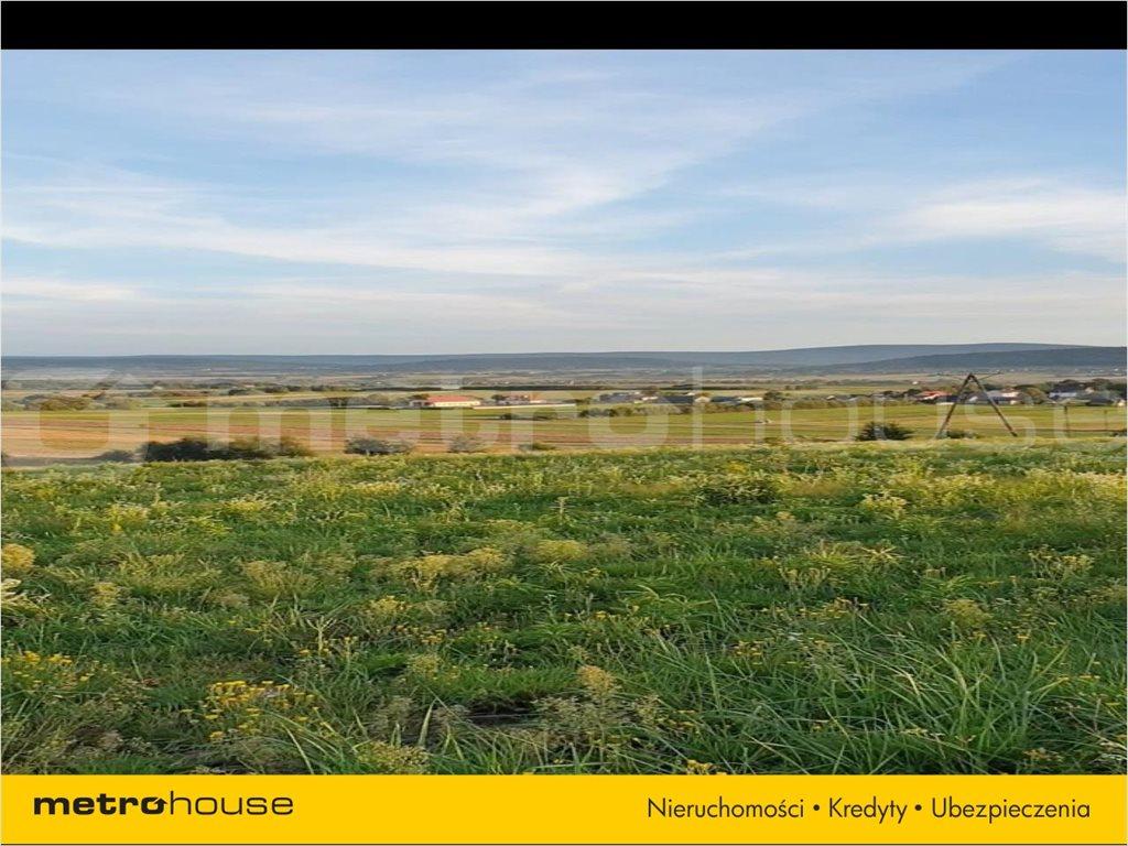 Działka rolna na sprzedaż Bodzentyn, Bodzentyn  3807m2 Foto 2