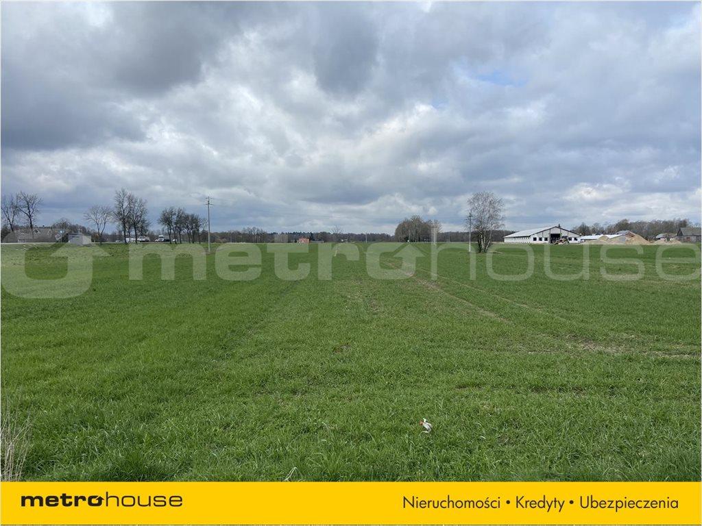 Działka rolna na sprzedaż Rogoźnica, Międzyrzec Podlaski  14100m2 Foto 3