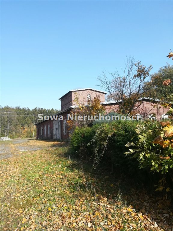 Lokal użytkowy na sprzedaż Wałbrzych  982m2 Foto 10