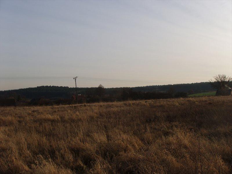 Działka budowlana na sprzedaż Rurka  3000m2 Foto 2