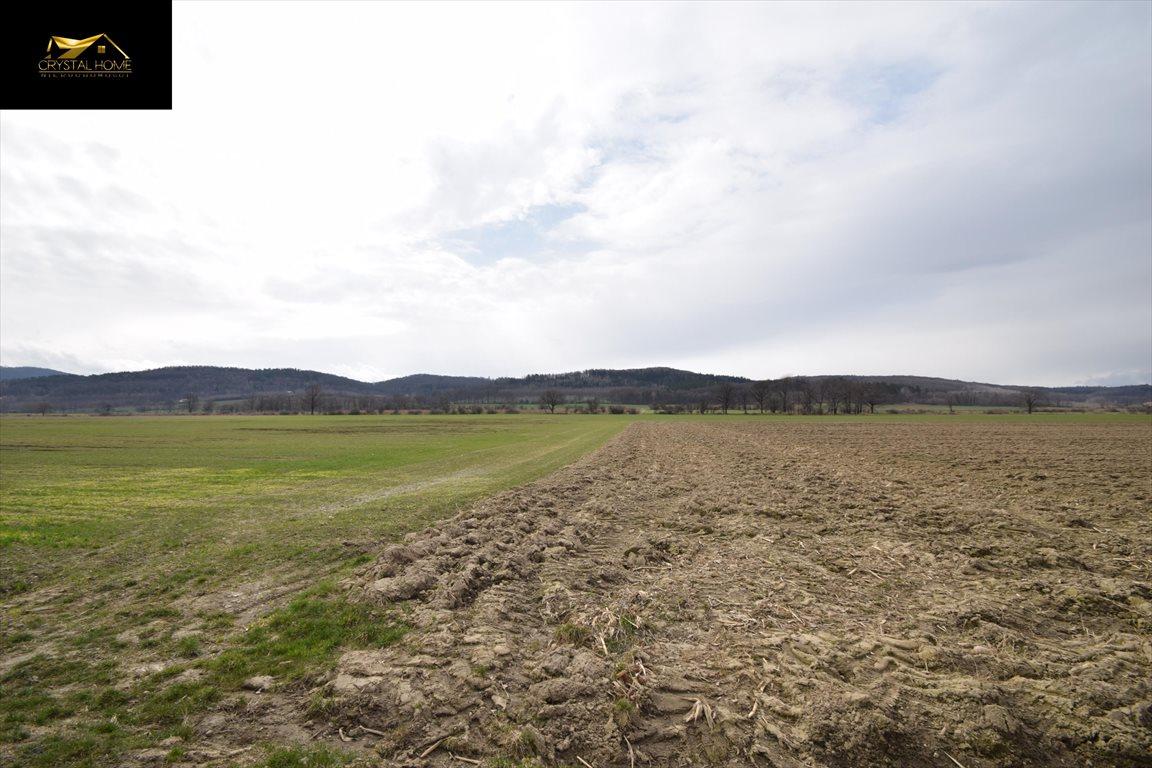Działka rolna na sprzedaż Burkatów  32610m2 Foto 5