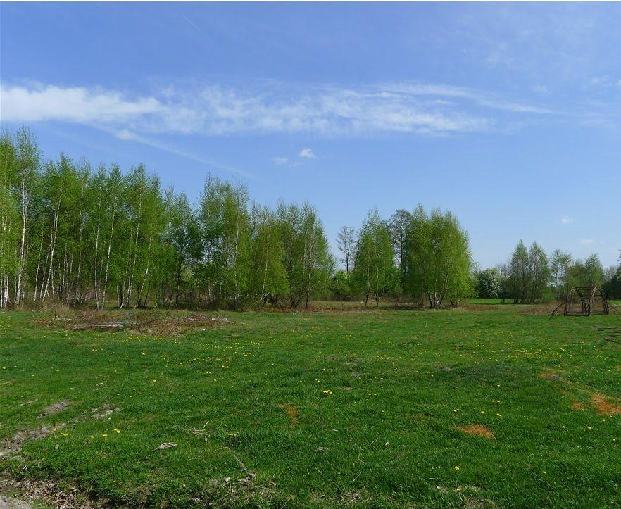 Działka rolna na sprzedaż Wypychów  4013m2 Foto 1