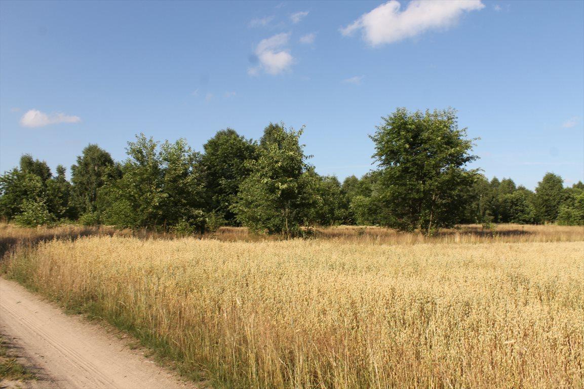 Działka rolna na sprzedaż Łagiewniki Nowe  9500m2 Foto 2