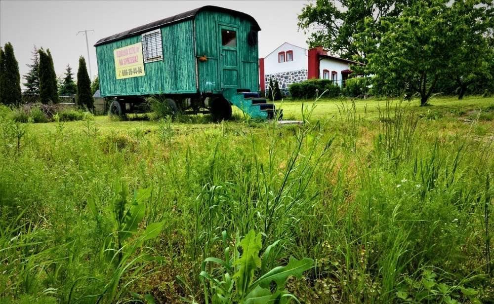 Działka budowlana na sprzedaż Kłecko, Kłecko-Kolonia  1273m2 Foto 11