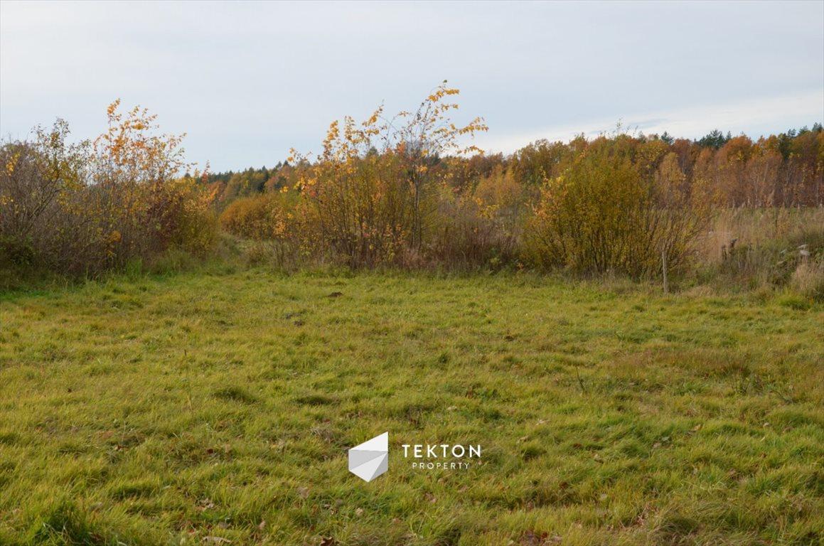 Działka rolna na sprzedaż Gdynia, Chwarzno-Wiczlino  8057m2 Foto 2