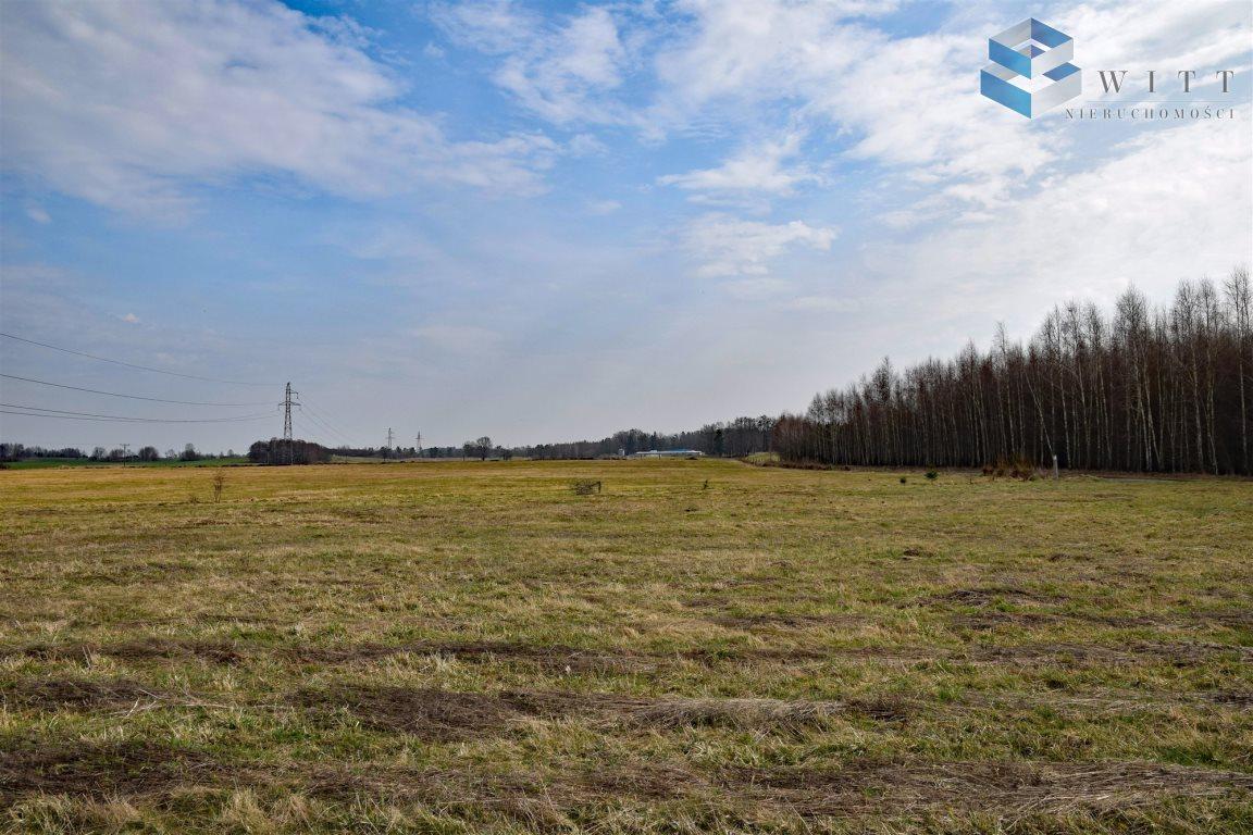 Działka rolna na sprzedaż Morąg, Kudypy  5200m2 Foto 8