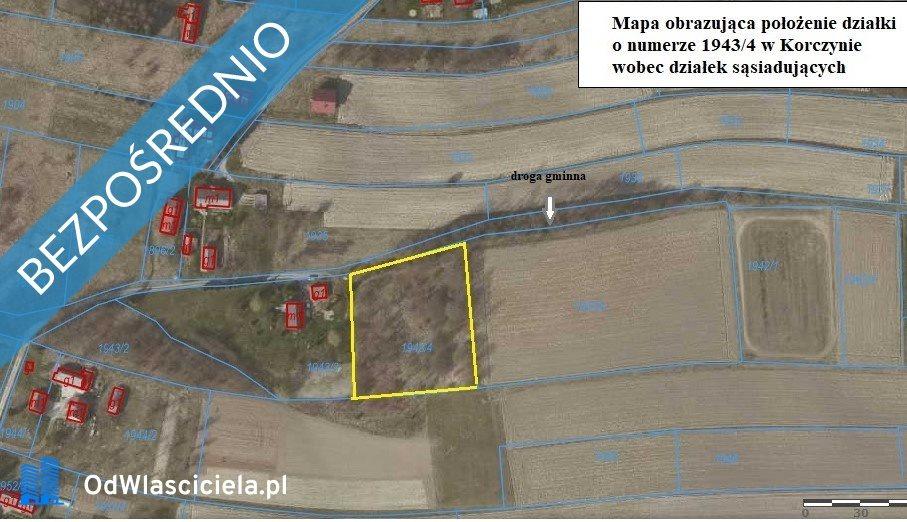 Działka rolna na sprzedaż Korczyna, Łąkowa  4600m2 Foto 6