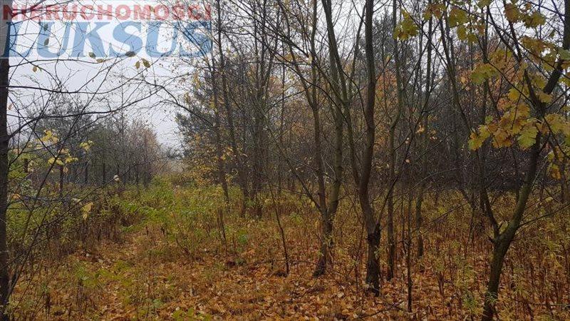 Działka budowlana na sprzedaż Sękocin Nowy  1075m2 Foto 1