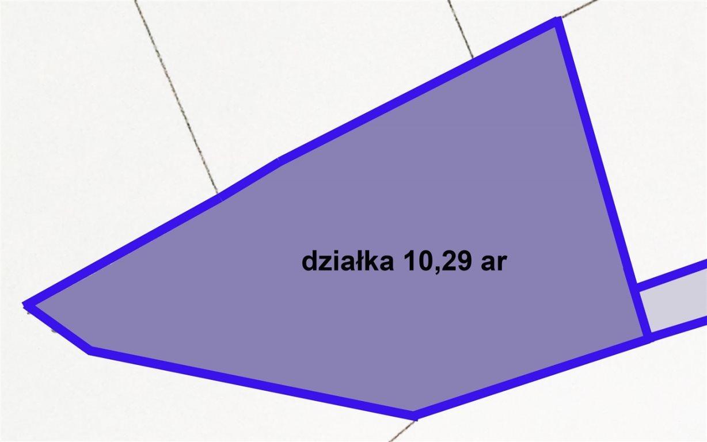 Działka budowlana na sprzedaż Kraków, Swoszowice, Wróblowice, Niewodniczańskiego  1029m2 Foto 4
