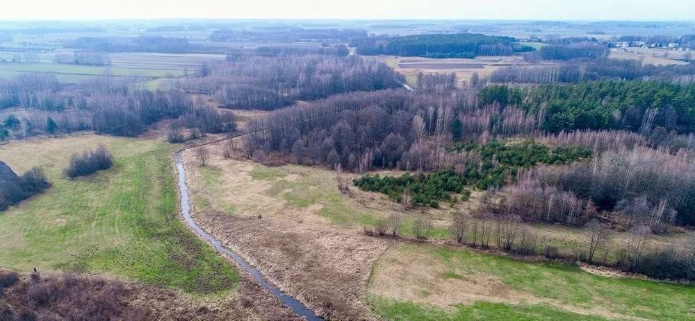 Działka rolna na sprzedaż Janowicze  4300m2 Foto 6