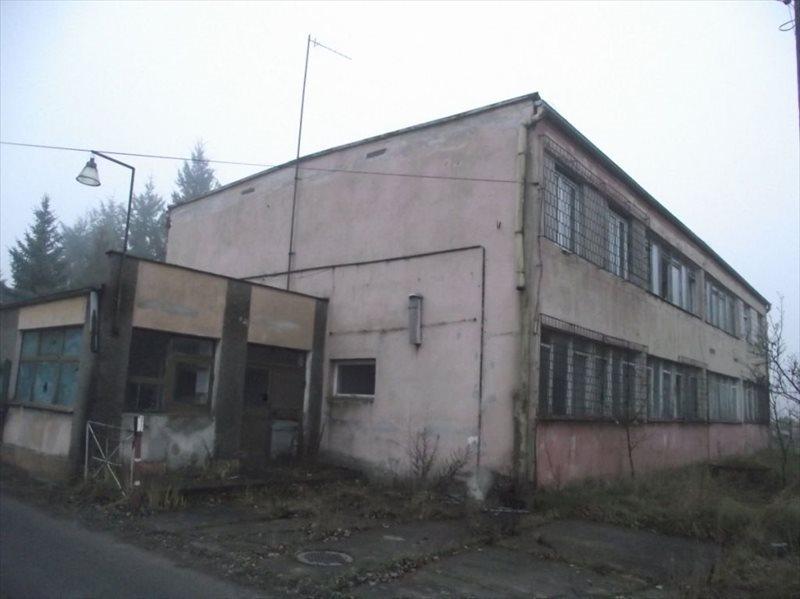 Lokal użytkowy na wynajem Nowogród Bobrzański  600m2 Foto 1