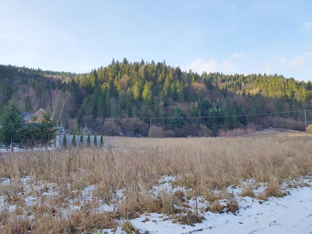 Działka budowlana na sprzedaż Kamienica  1000m2 Foto 2