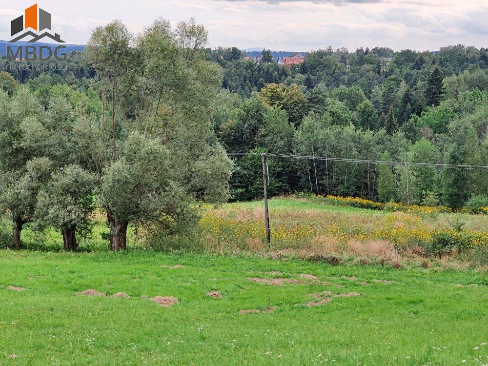 Działka leśna na sprzedaż Włosań  29600m2 Foto 2