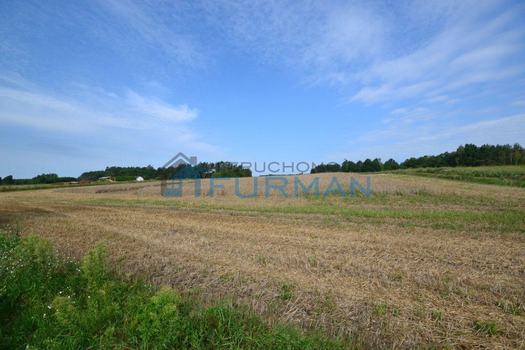 Działka leśna na sprzedaż Kuźnica Czarnkowska  76200m2 Foto 8