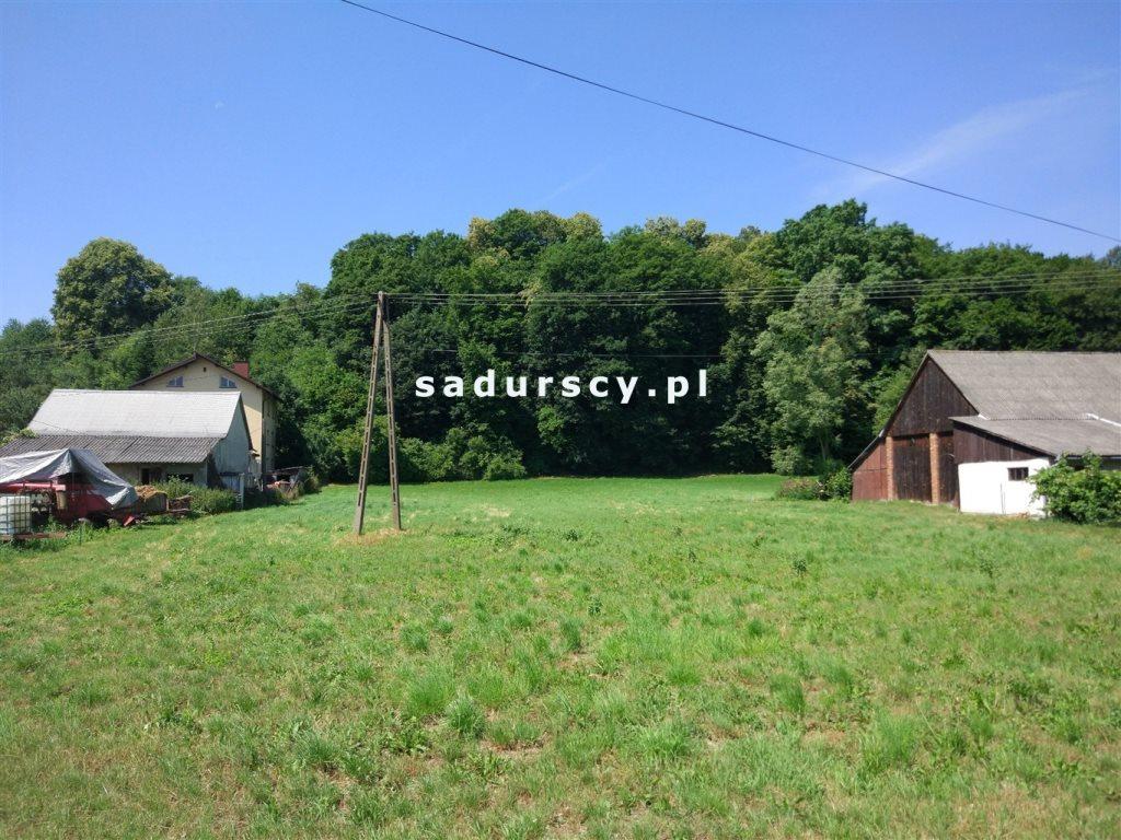 Działka budowlana na sprzedaż Giebułtów, Zarzecze  3761m2 Foto 6